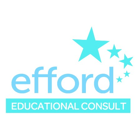 Efford Education Consult –                         ACT Reps in Ghana
